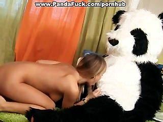 흥분 팬더 곰과 섹스 토이 파티
