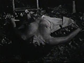 소프트 코어 누드 590 1970 년대 장면 2