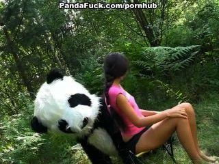 거대한 장난감 팬더와 숲에서 섹스