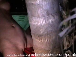 트리 홈 비디오와 섹스 스트랩