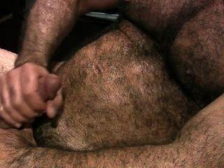 큰 털이 apexxx