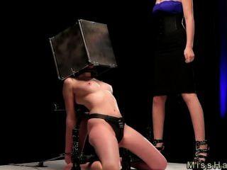 강철 상자에 머리가 박힌 bdsm 베이비