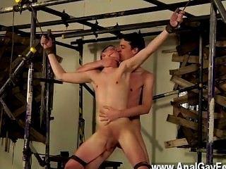 게이 jocks sean은 많은 권위있는 소년들과 같습니다.