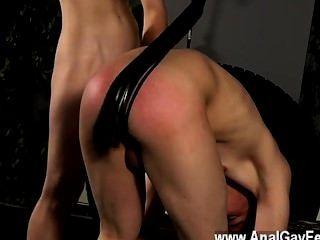 게이 포르노에 붉은 장미 빛 엉덩이