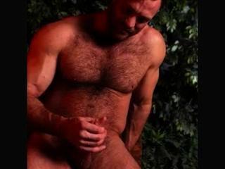 애런은 뜨거운 영국 곰이다.