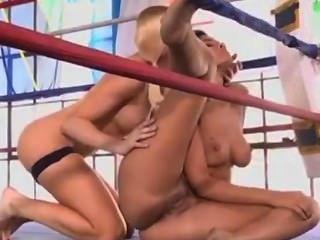 섹스 위치 가이드