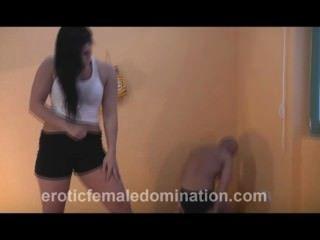 암컷은 여주인 캐롤라인과 함께 무력한 노예를 찾아 나선다.