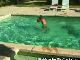 수영장에서 근육질의 덩어리를 빠는 수탉