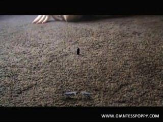 거인 양귀비, 비디오 1