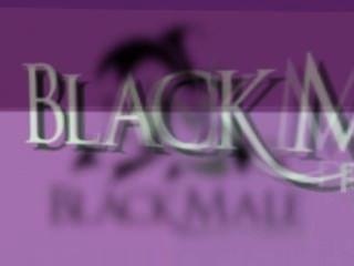blackmale 사진 트레일러 2013
