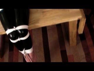 내가 좋아하는 고양이 옷에 묶여있다.