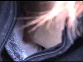 다운 블라우스