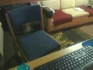 spycam에 잡힌 룸메이트