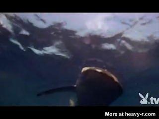 상어 감금소에있는 누드 소녀
