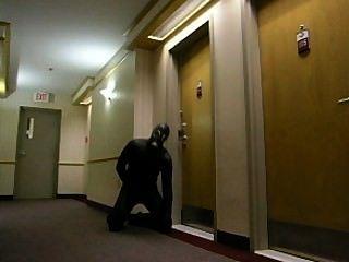 흥분한 개구리가 호텔에 몰래 들어 와서 호텔 방으로 들어간다.