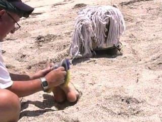 거칠고 눈을 가린 해변에서의 잔인한 간질 고문